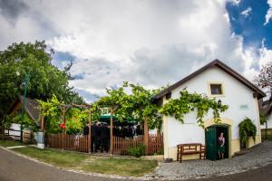 Trauung_247